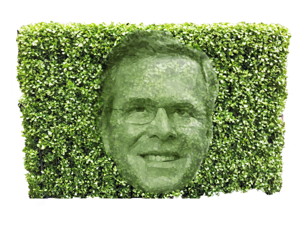 Bush hedge