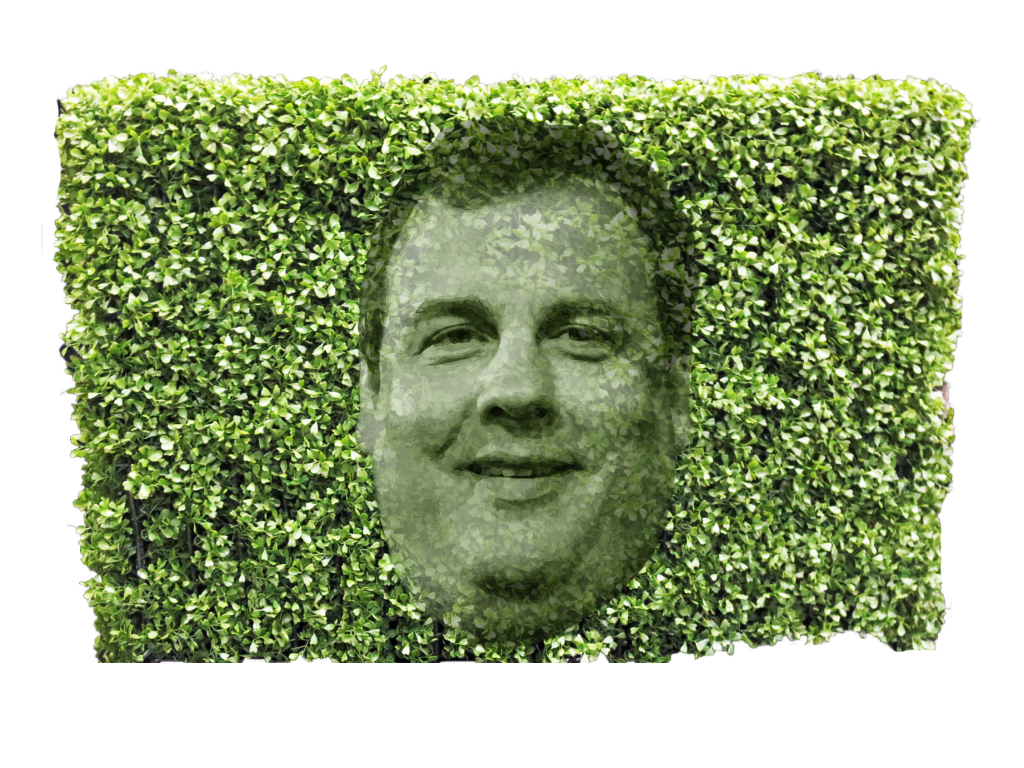 Christie hedge