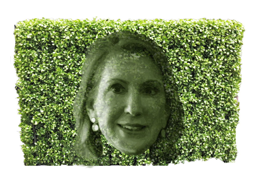 Fiorina hedge