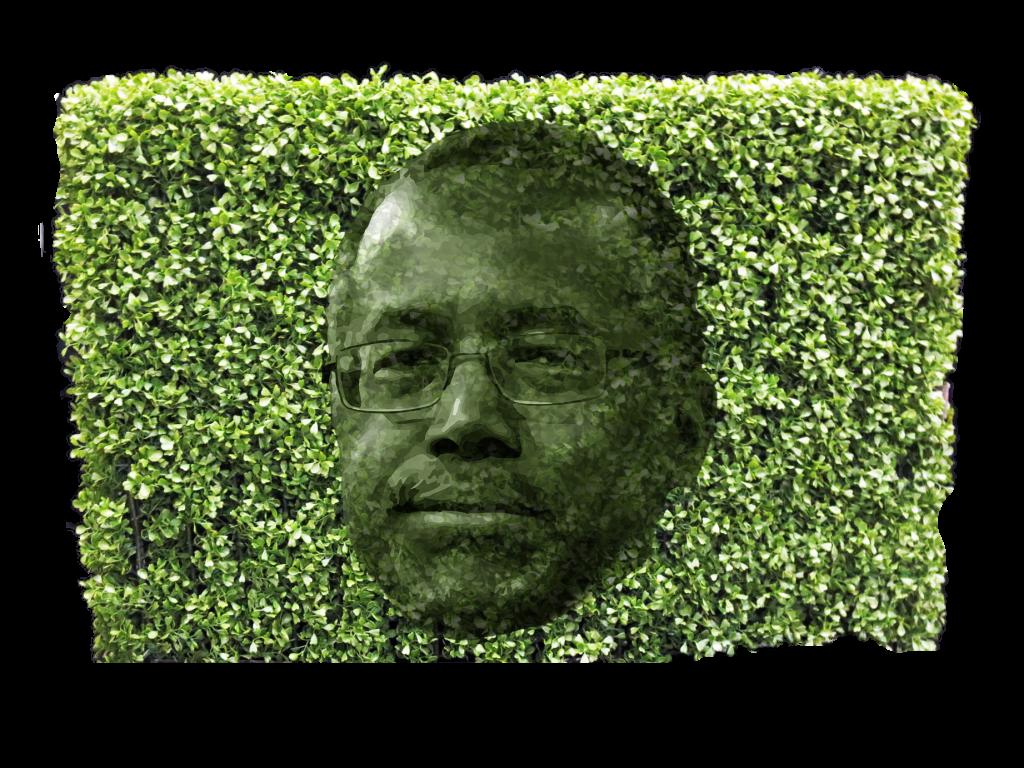 carson hedge