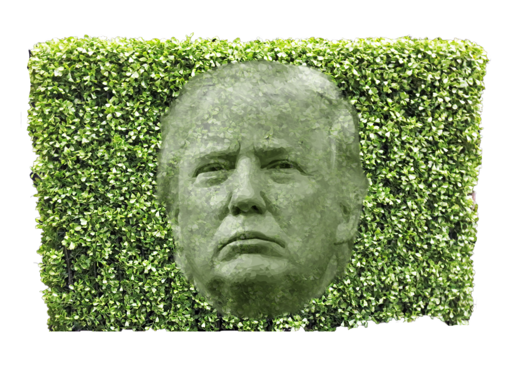 trump hedge